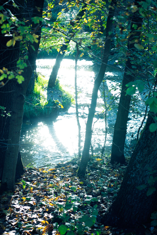 Water glare by nilfgaad