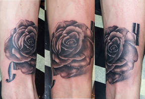 Rose by justTattoo