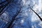 Blue Sky over Columcille