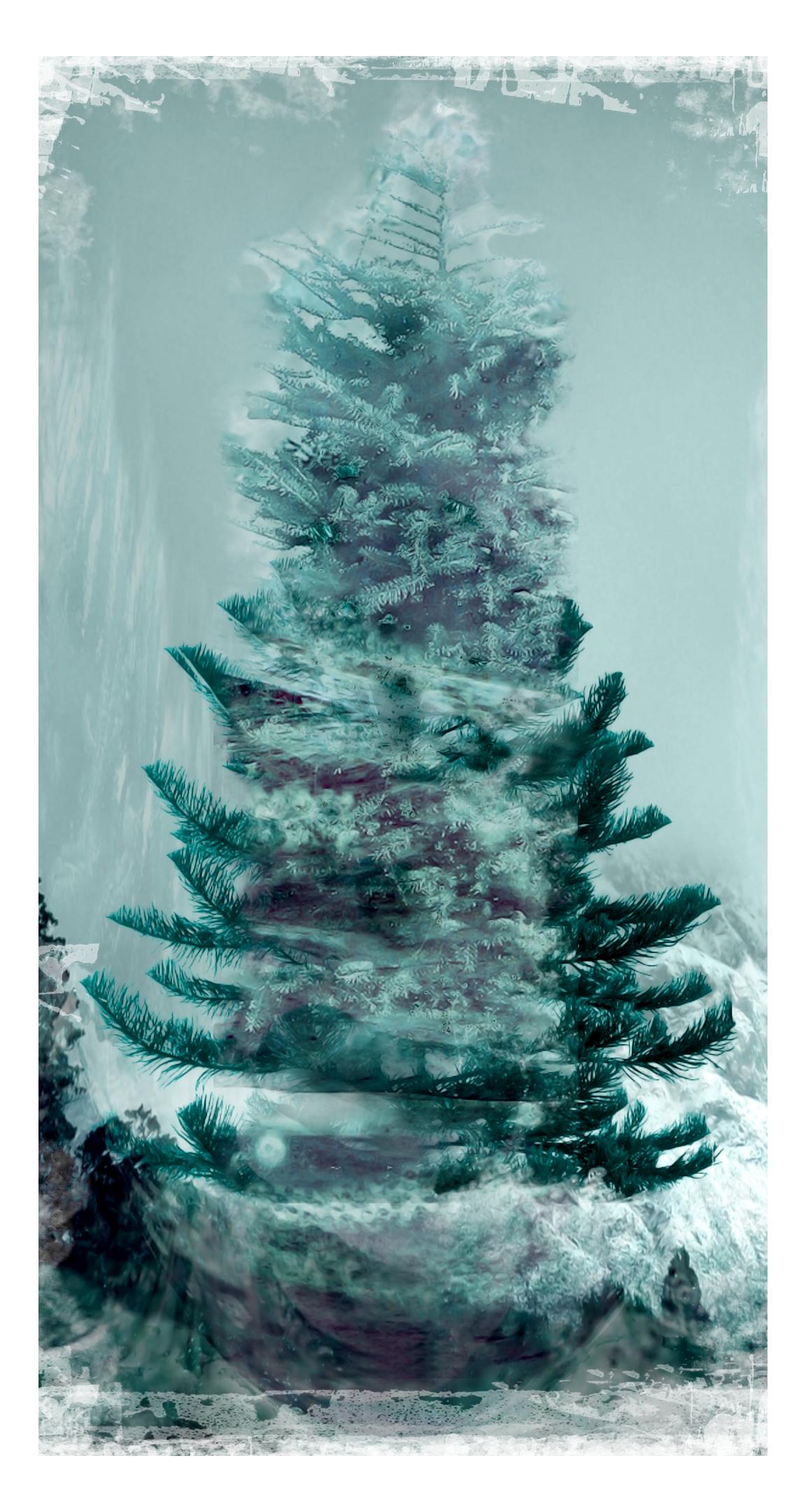 christmas_tree_by_lovelycristina.jpg