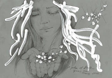 a palm of seeds... by lovelycristina