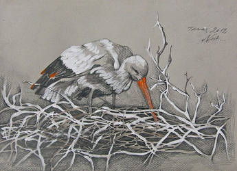 nest by lovelycristina