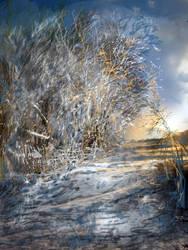 wintery by lovelycristina