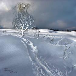 path.. reaching moonlight by lovelycristina