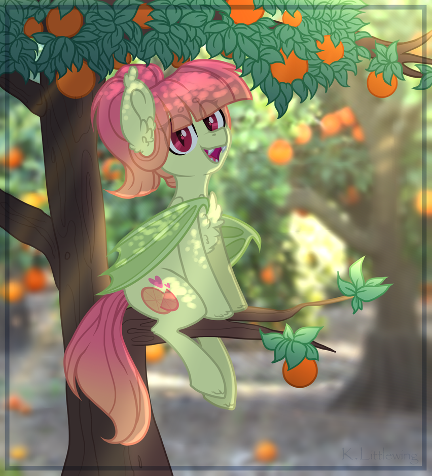 - Are you looking for oranges too? by KateTheLittlePegasus