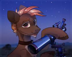 A stargazer by Trickate