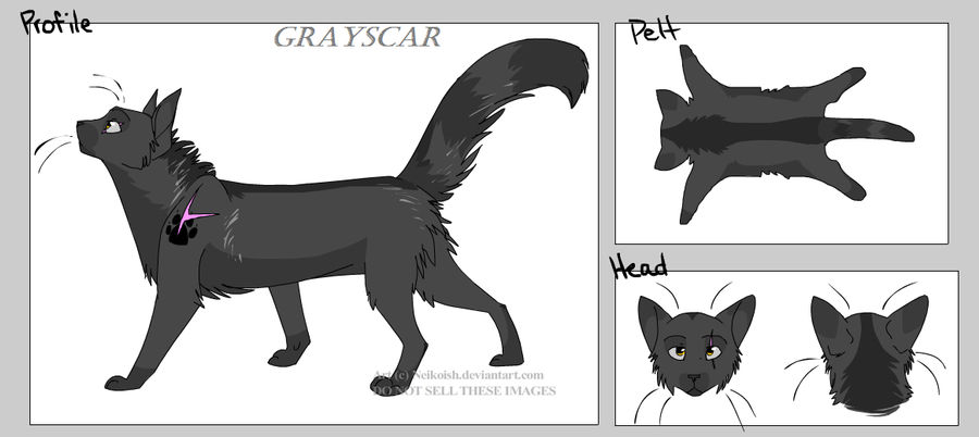 Create-a-Cat Grayscar by puky1199 on DeviantArt