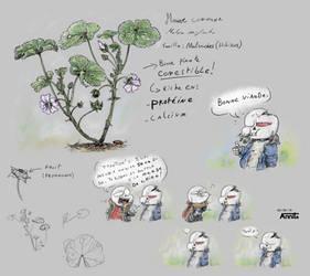 Plante riche en proteine by AnnitArt