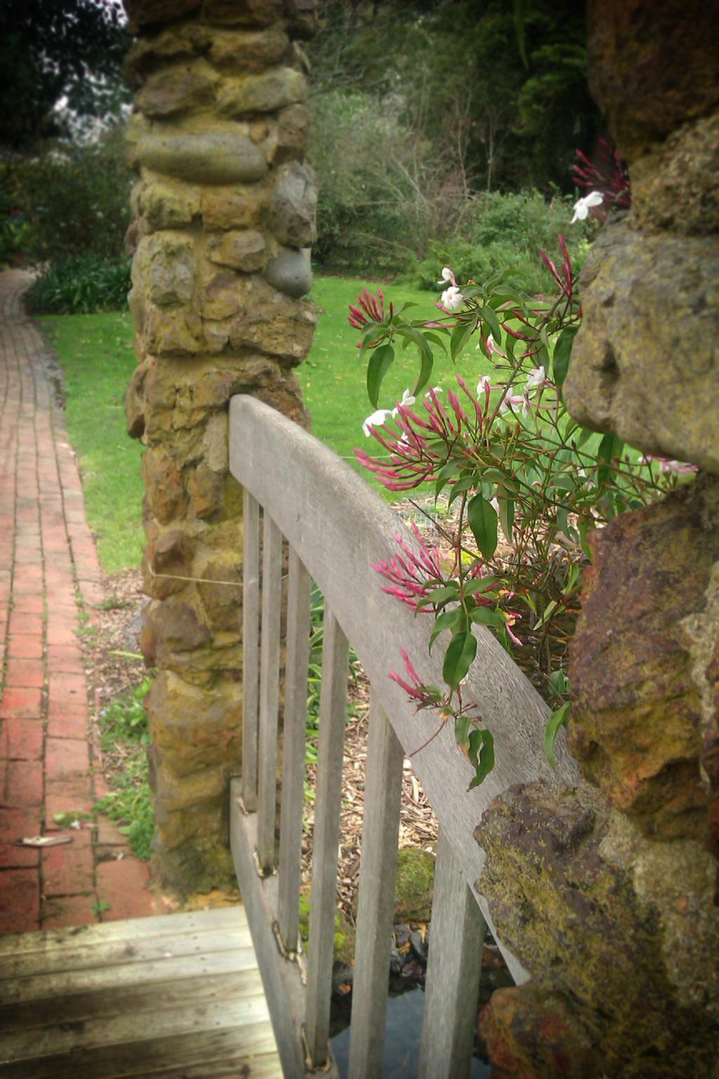 Over the jasmine bridge by apple-symphony