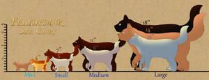 Felidemar Cat Size Chart