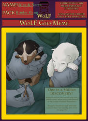 WoLF Geo Meme: Miles and Nerys