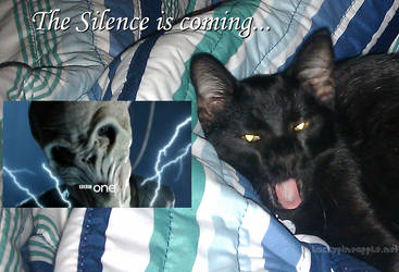 Silence kitty