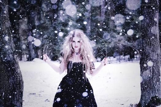 Winter queen IV