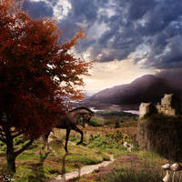 Autumn Day by Olgola