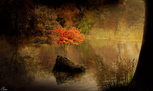 Hidden - Autumn by Olgola