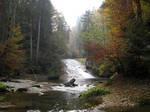 Autumn forest 03