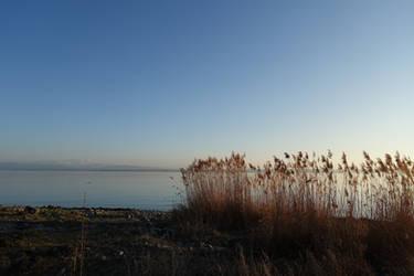 Lake side 01 by Olgola