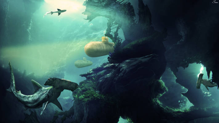 Shark kingdom