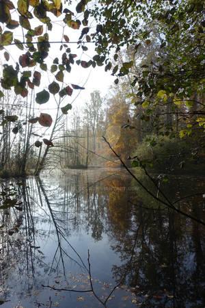 Misty lake 02