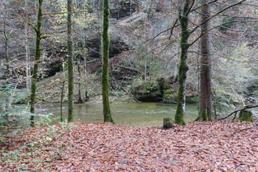 Quiet river 01