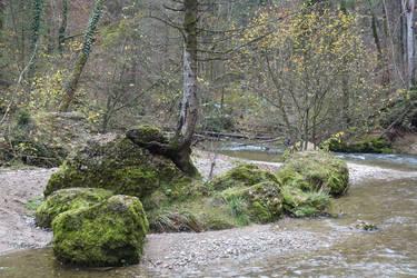 River rocks 01