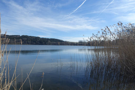 Lake 02 - Illmensee