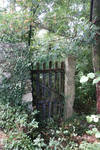 Gate in the forest