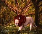 A Walk Among the Trees by reveriegraphics