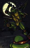 Teenage Mutant Ninja Turtles by Z-control