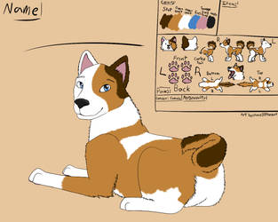 Doggo Ref Sheet by Ame88thewolf