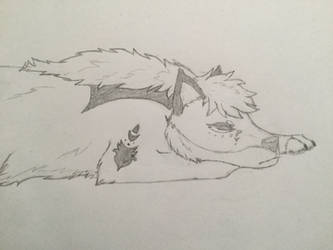 Lazy Snoozy Raynell by Ame88thewolf