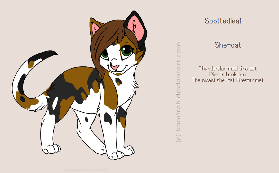 warrior cats coloring pages spottedleaf - photo#14
