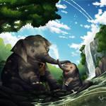 Elephants and Human