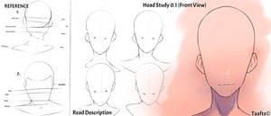 Head Study 0.1