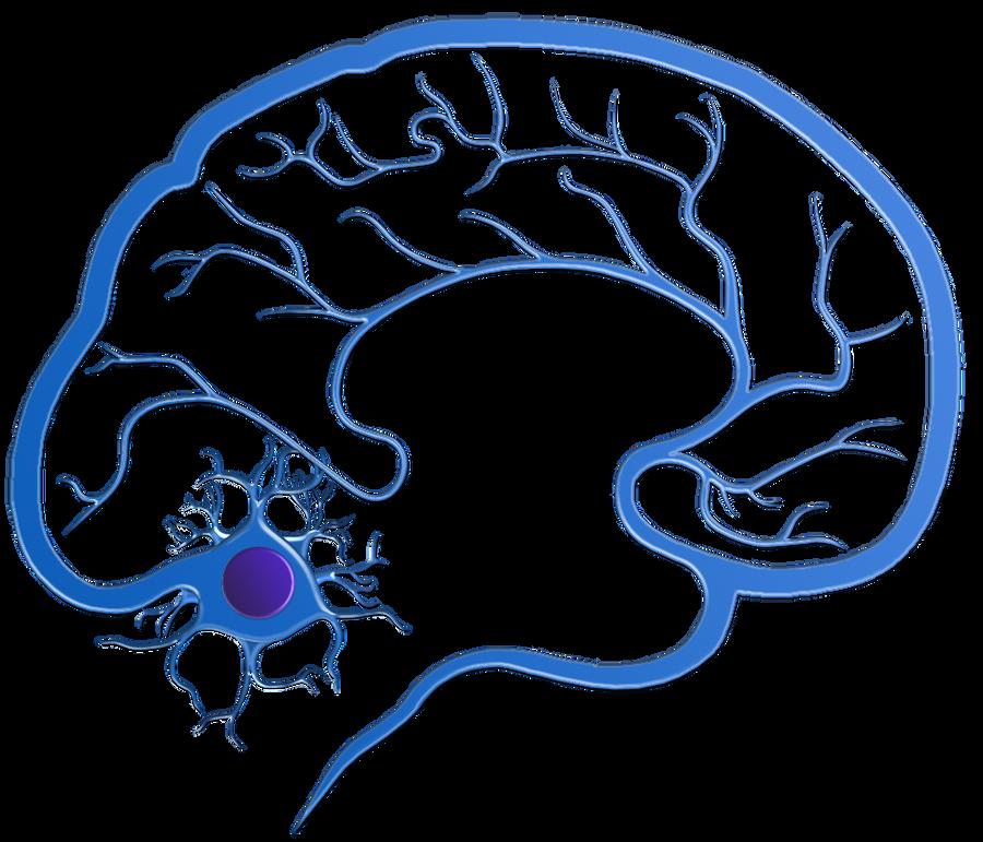 neurology logo by dasterion on deviantart