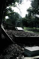 Forgotten Yard by gzzmos