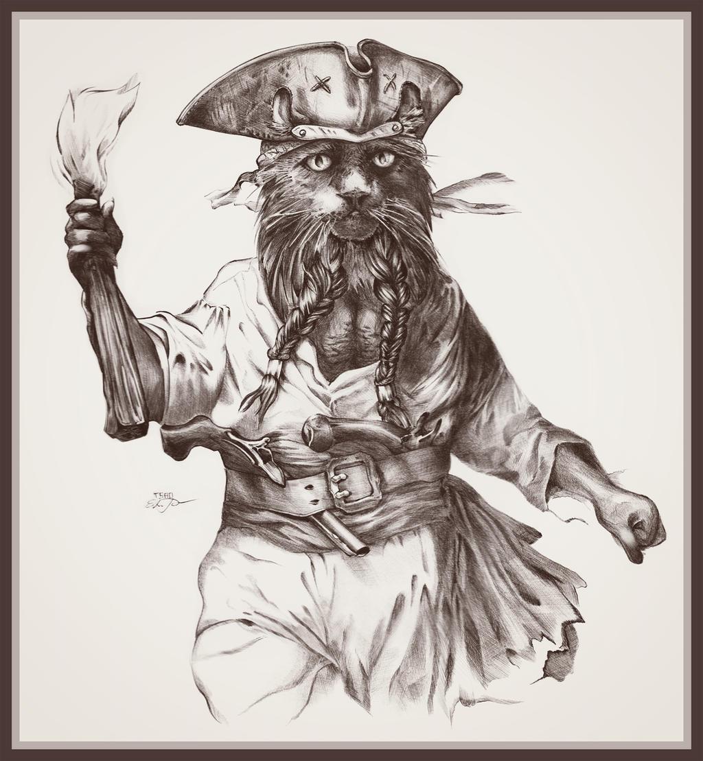 Catbeard the Pirate by TsaoShin
