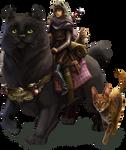 Kitty devID