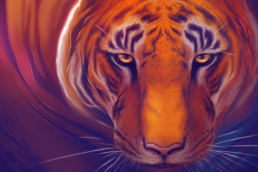 Solar Tiger by TsaoShin