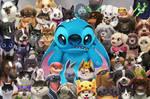 Stitch 'n Pets