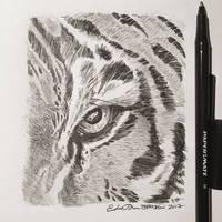 Inktober Day 12: Wild Cat by TsaoShin