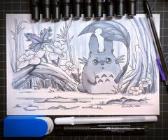 Rainy Totoro by TsaoShin