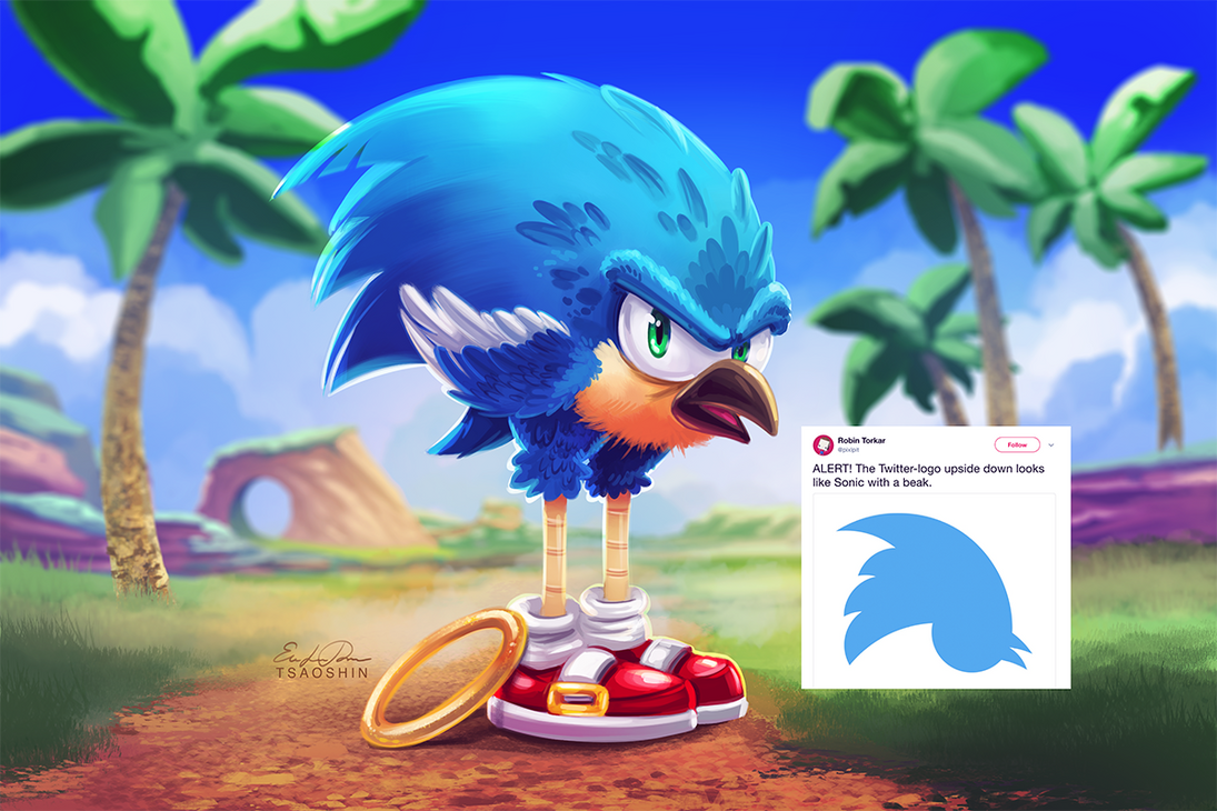 twitter sonic by tsaoshin on deviantart