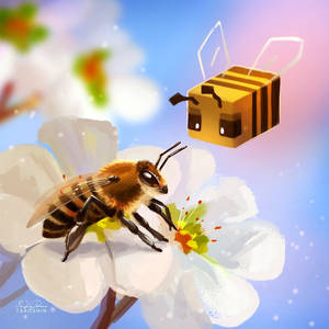 Bee Cube