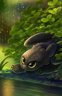 Tiny Toothless
