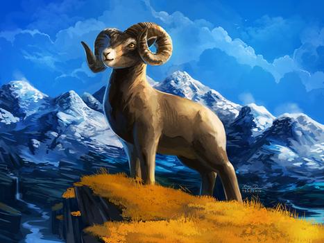 Sheeptember - Mountain Sheep