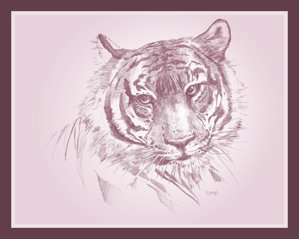 Rose Tiger by TsaoShin