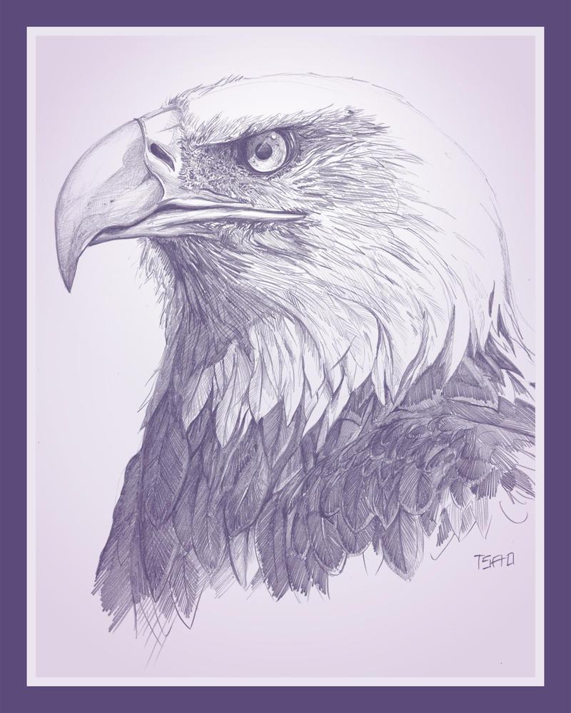 Lilac Eagle by TsaoShin