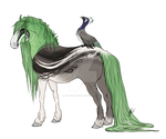 Peafowl Friesian | Imperial Event