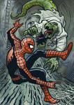 Spidey vs the Lizard